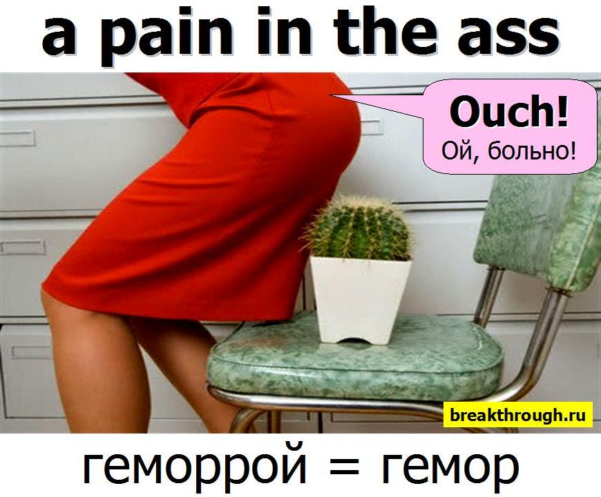 геморрой гемор a pain in the ass