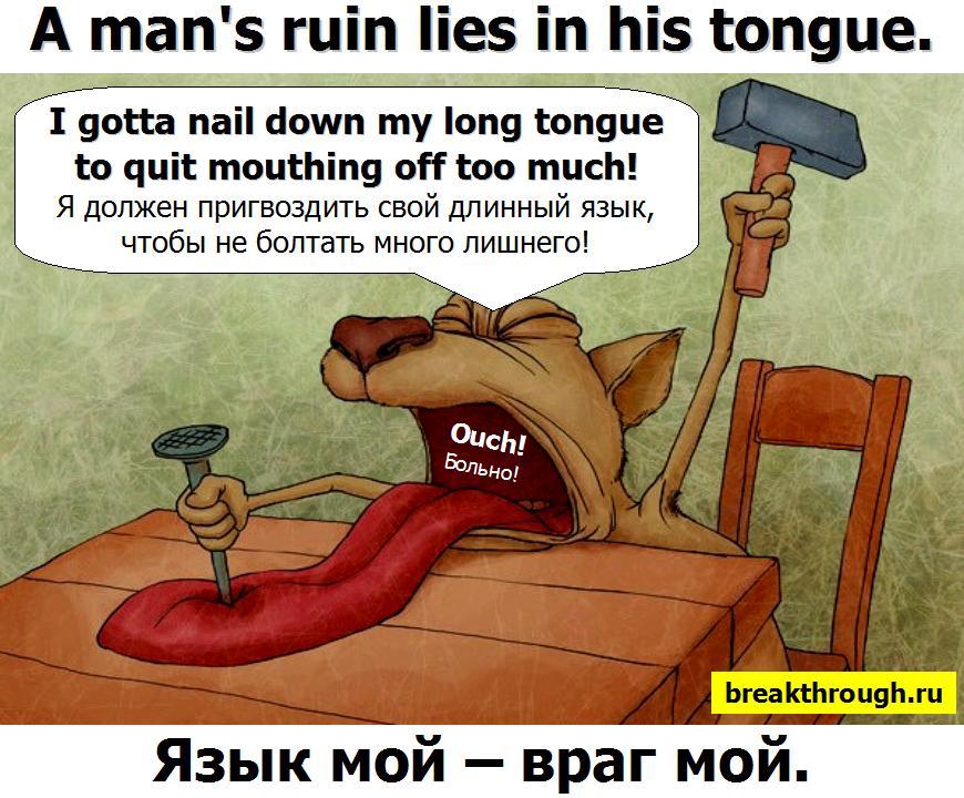 Язык мой враг мой