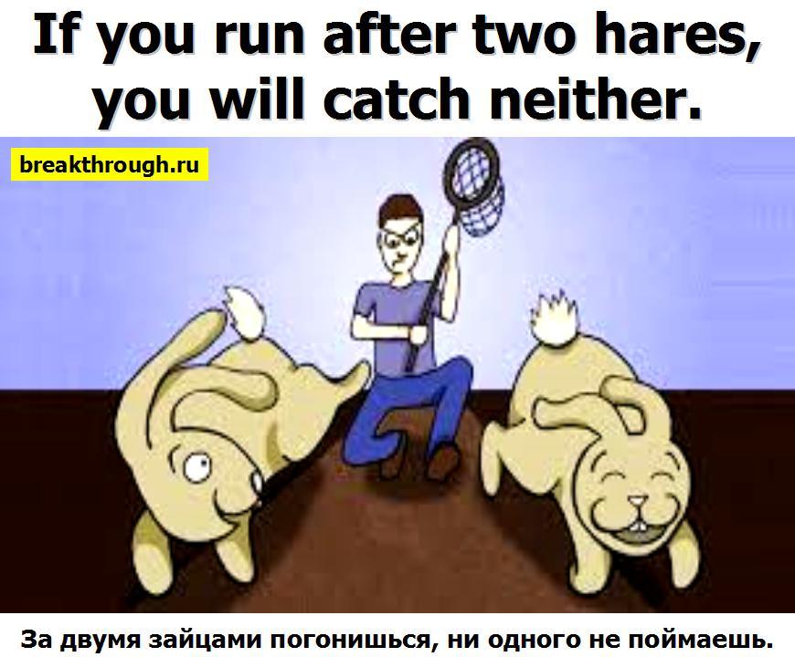 За двумя зайцами погонишься ни одного не поймаешь