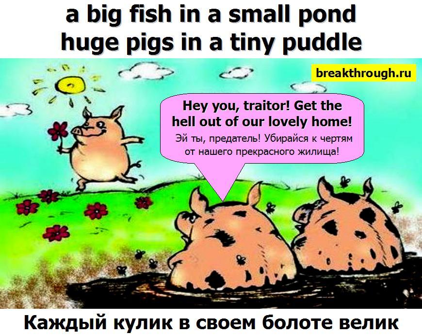 Каждый кулик своё болото хвалит на своём болоте велик