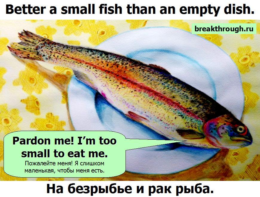 На безрыбье и рак рыба