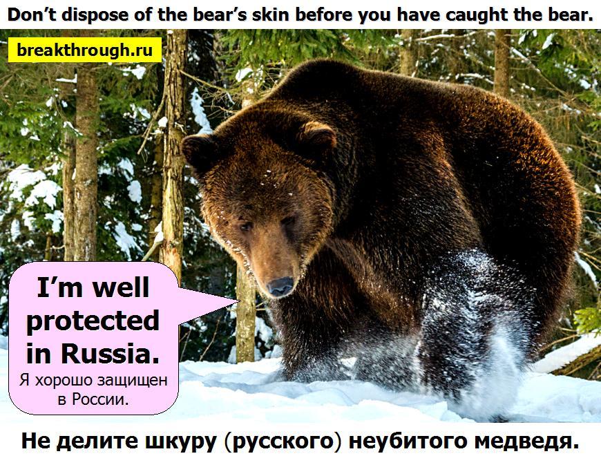 Не делите делить шкуру неубитого медведя