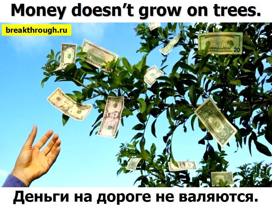 Деньги бабки бабло лавешки на дороге не валяются растут на деревьях
