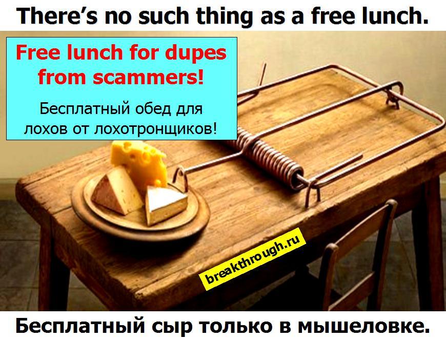 Бесплатный сыр только в мышеловке