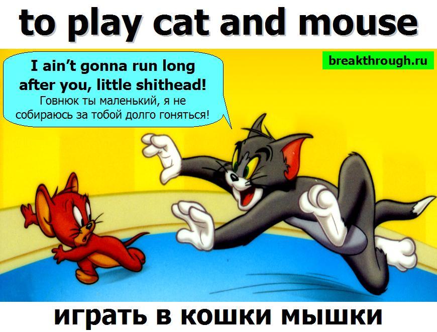 играть в кошки мышки