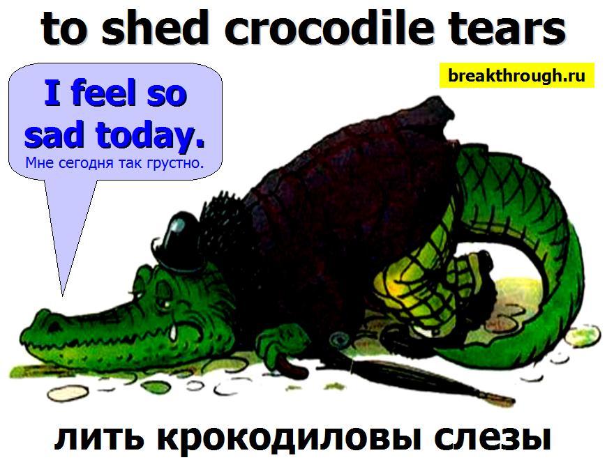 лить проливать крокодиловы слезы