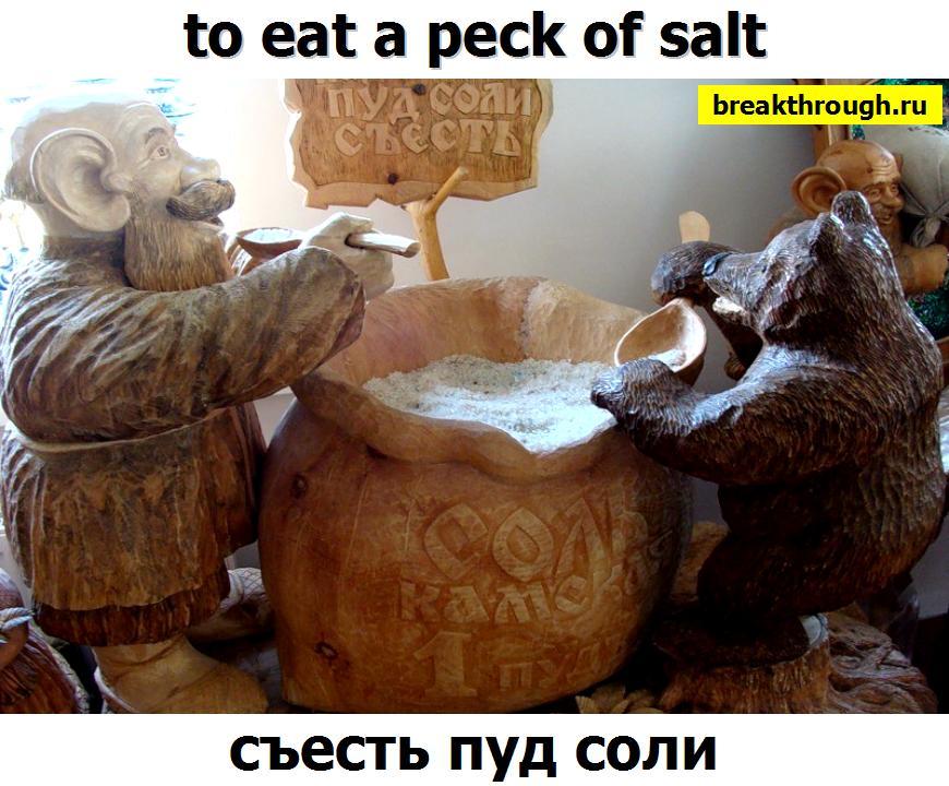 пуд соли нужно необходимо съесть с кем-либо кем-то