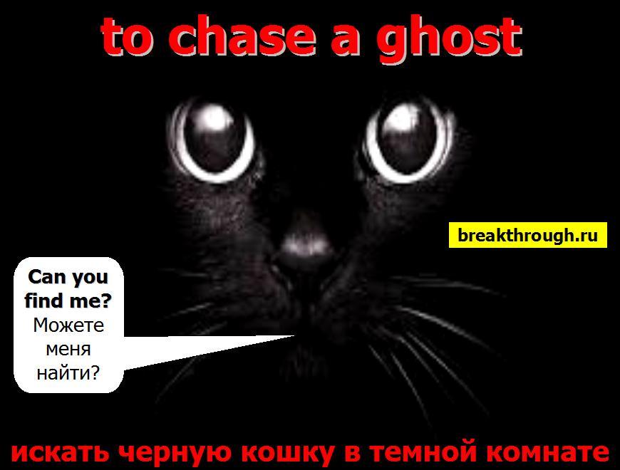 искать черную кошку в темной комнате