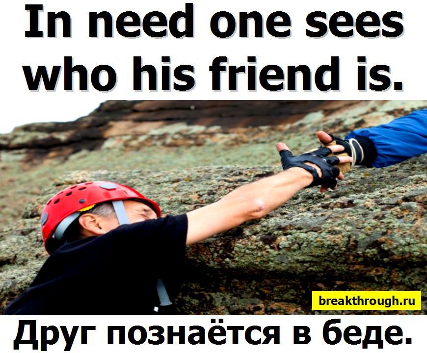 Друзья познаются друг познается в беде и несчастье