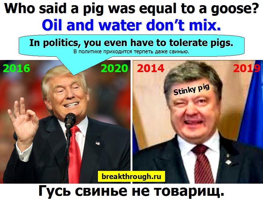 Дональд Трамп Порошенко не товарищ