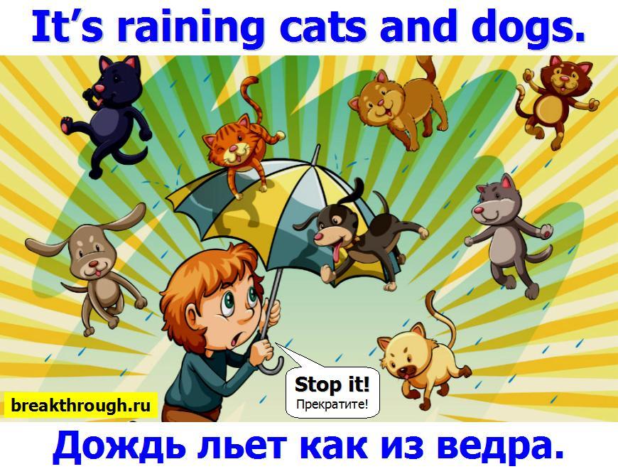 идет сильный дождь льет как из ведра