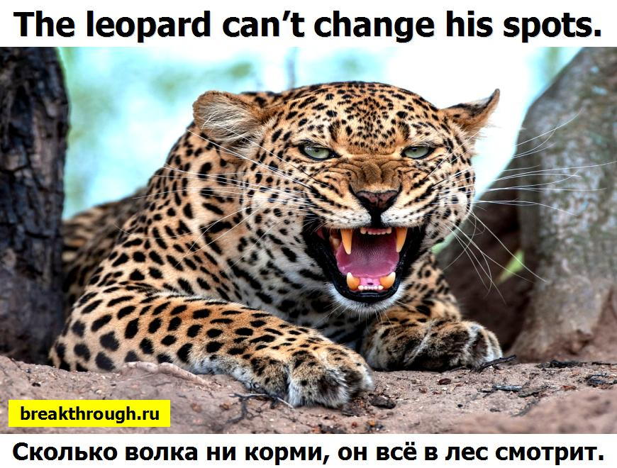 Can the leopard change his spots?
