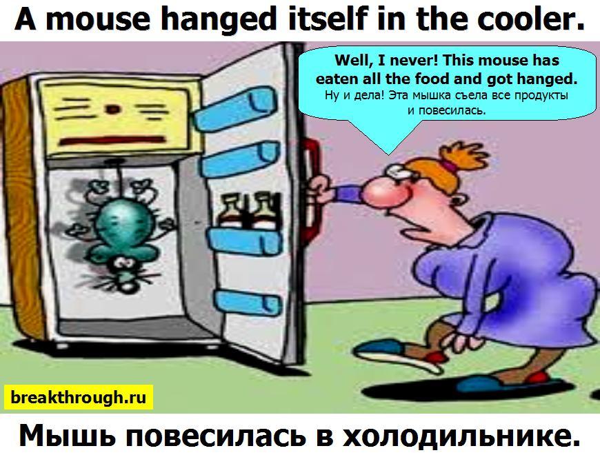 Мышь повесилась в холодильнике с голодухи от голода