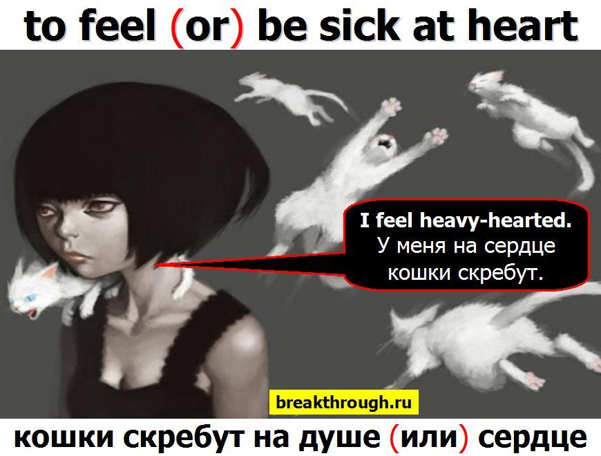 на душе сердце кошки скребут