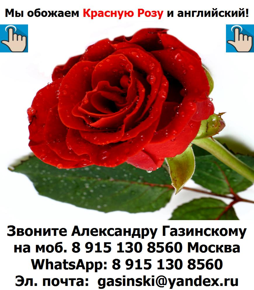 BTC Red Rose - Красная Роза - символ школы BTC English