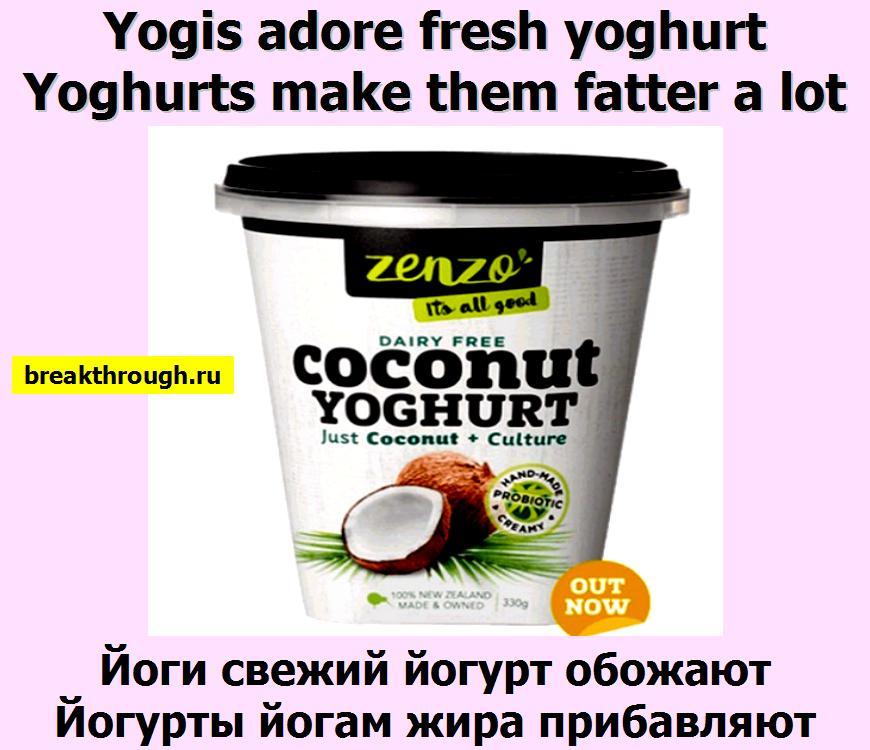 Йоги свежий йогурт обожают Йогурты йогам жира прибавляют